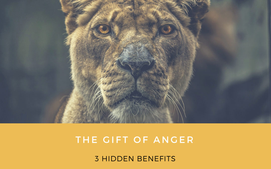 The Gift of Anger: 3 Hidden Benefits